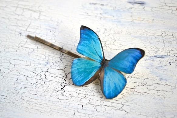 小さな森に住む蝶のヘアピン ブルー|ヘアピン|ハンドメイド通販・販売のCreema (1697)