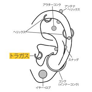 ボディピアスの基礎知識~へリックスとトラガス~ | 軟骨ピアスまとめ|ボディピアス専門店 凛りん (4457)