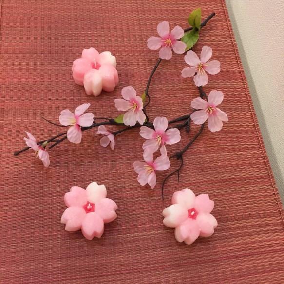 さくら咲くキャンドル キャンドル ハンドメイド通販・販売のCreema (9086)