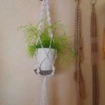 おしゃれな手作りプラントハンガーにお気に入りの植物を飾ろう*
