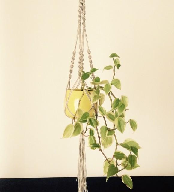 プラントハンガー ceramic003|一輪挿し・花瓶・花器|ハンドメイド通販・販売のCreema (10075)