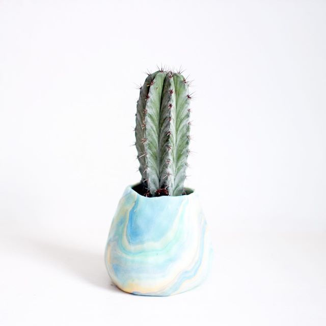 #marbled #planter #cacti #cactus #plantpot #handmade #london #etsy | Iconosquare (12352)